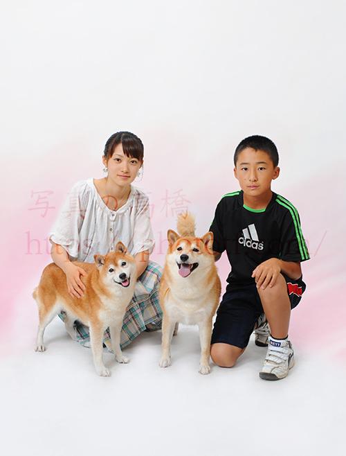 ご家族と柴犬