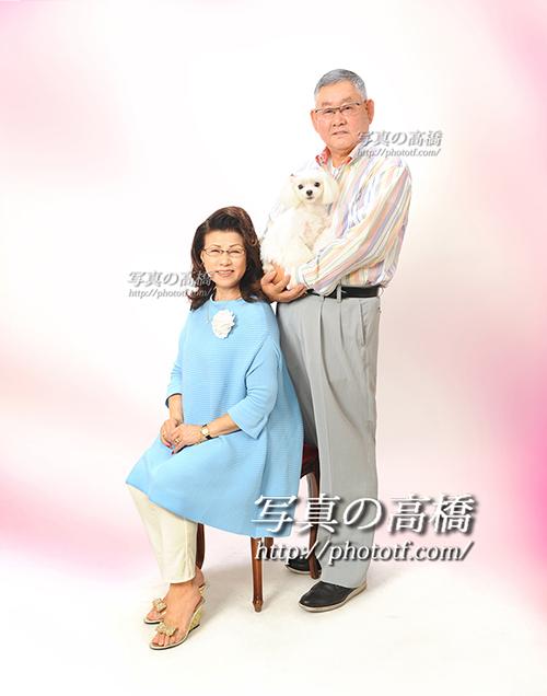 マルチーズと一緒に毎年ご夫婦で記念写真撮影3